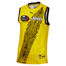 Richmond Tigers Puma Youth Dreamtime Guernsey