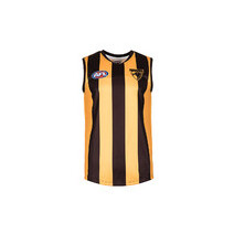 Hawthorn Hawks Replica Youth Guernsey
