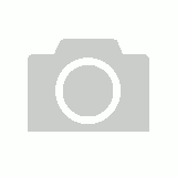 Port Adelaide Power Bar Scarf